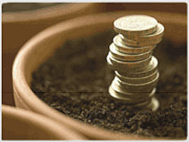 coin plant1 Forex Learning Videos That Makes Learning Forex Trading Fun!